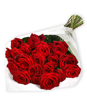 Red roses for my Birthday