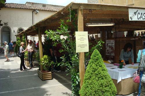 Wine tasting in Lamole, Tuscany, Florence, Italy