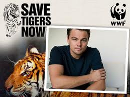 Leonardo di Caprio and Tigers with WWF