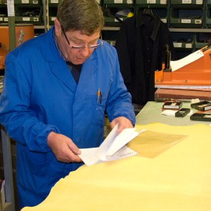 Quality control of leather hides